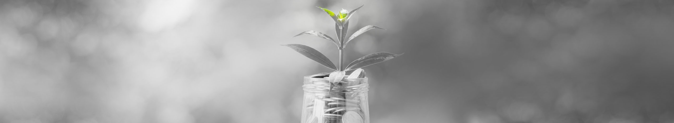 Wealth growing because of a good financial advisor